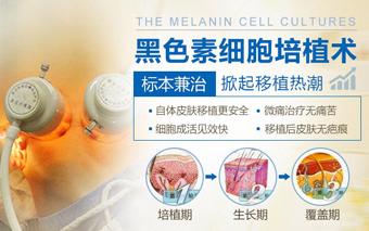 黑色素细胞培植术